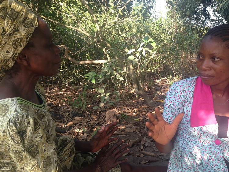 An agricultural extension agent and farmer discuss cassava markets in south west Nigeria | Photo: L Forsythe