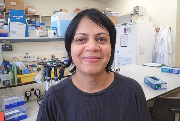 Dr Rekha Swamy