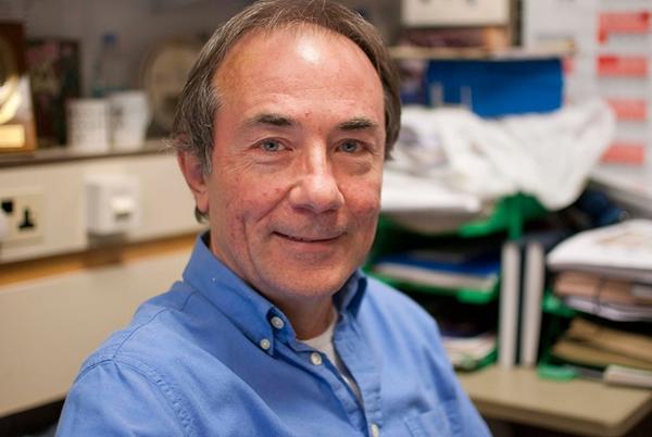 Professor Rick J Hodges
